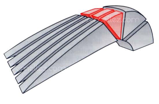 schéma mécanique du pied au repos